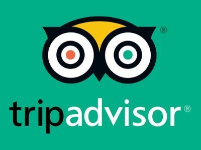 Tripadvisor ICS Group Security Ireland